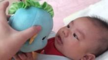 99天 乐宝宝亲亲小海马(来自拍客手机客户端 下载地址:http://video.sina.com.cn/app/sinapaike.html)
