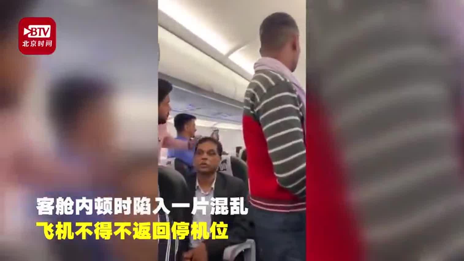 """视频-""""免票""""鸽子飞进机舱致航班延误 网友:它想"""