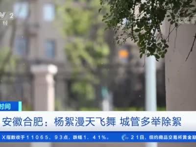 [第一时间]安徽合肥:杨絮漫天飞舞 城管多举除絮