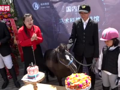 """""""世界上最小的马""""昆明庆生"""