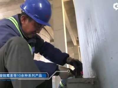 邢台:项目为王  效率至上