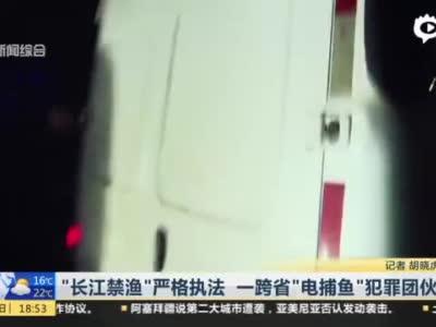 长江禁渔严格执法 沪警方摧毁跨省电捕鱼团伙