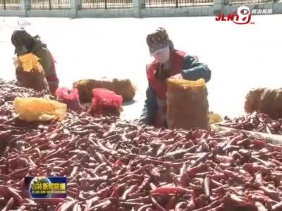 前三季度吉林省外贸恢复较快9月创今年单月进出口最高值