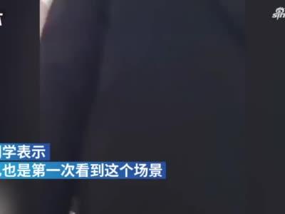 郑州小朋友在高校食堂柜台下写作业,学生:上边是生活下边是梦想