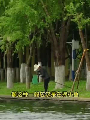 #市民河长日记#02