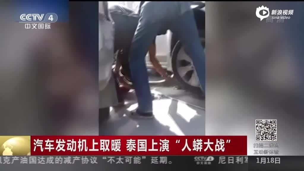 """《中国新闻》汽车发动机上取暖  泰国上演""""人蟒大战"""""""