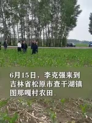"""李克强吉林玉米田头听农""""声"""""""