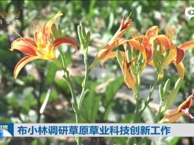 布小林调研草原草业科技创新工作
